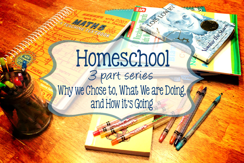 Homeschool Three Part Series Why We Chose to, What We are Doing, and How it's Going