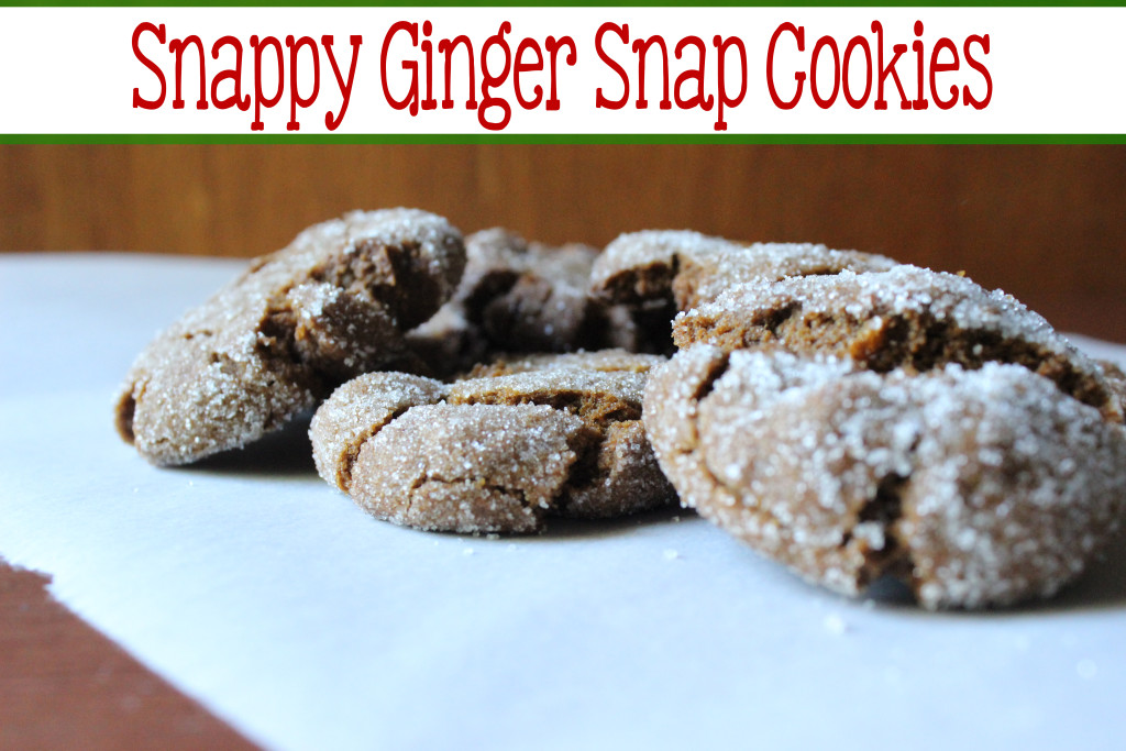 Snappy Ginger Snap Cookies