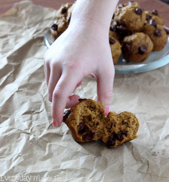 Packed with pumpkin and chocolate chips, these Mini Chocolate Chip Pumpkin Muffins are simple to make, and a great way to enjoy the flavors of fall!   EverydayMadeFresh.com
