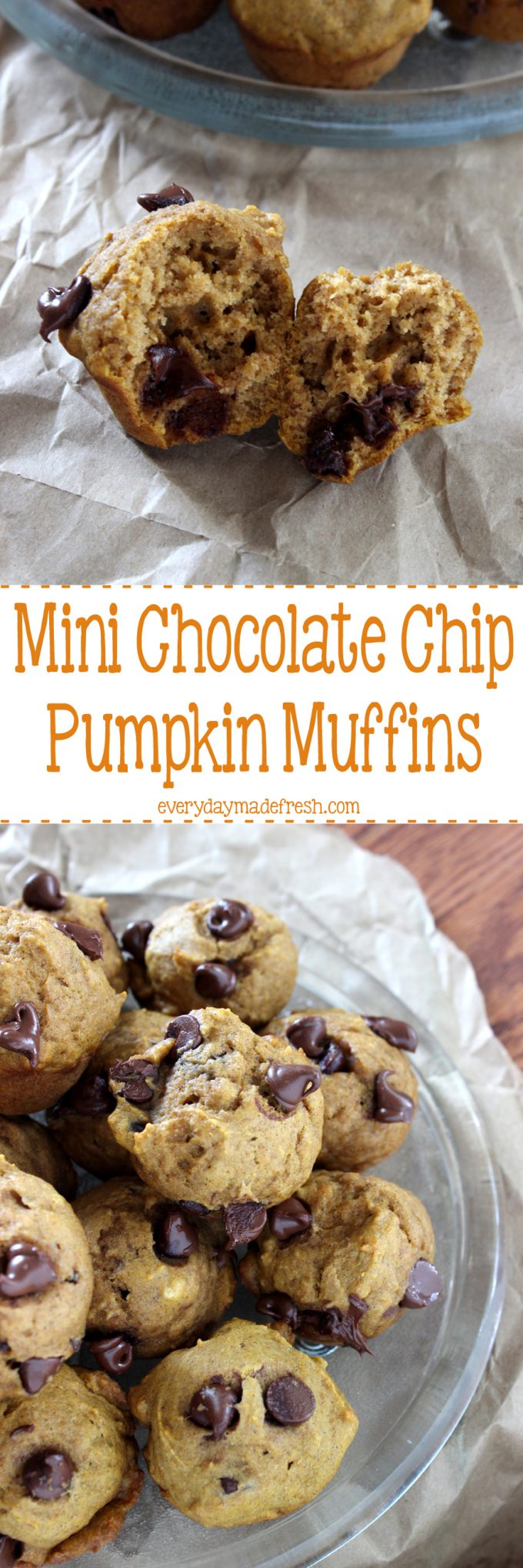 Packed with pumpkin and chocolate chips, these Mini Chocolate Chip Pumpkin Muffins are simple to make, and a great way to enjoy the flavors of fall! | EverydayMadeFresh.com