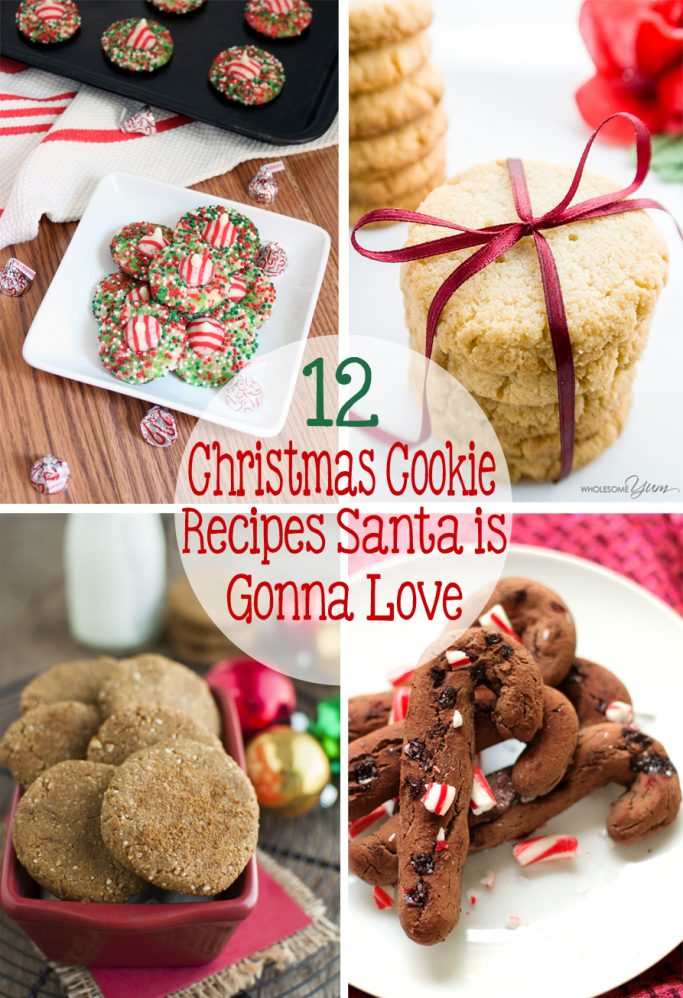 I can't resist a tasty cookie, and neither can Santa! Here are 12 Christmas Cookie Recipes Santa is Gonna Love! | EverydayMadeFresh.com