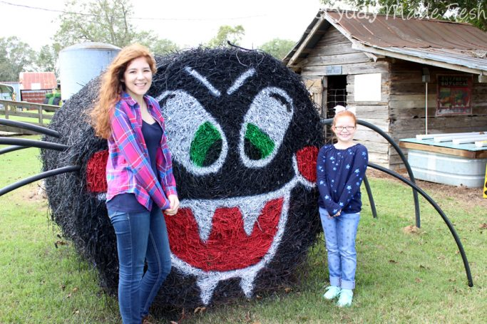 Looking for the best pumpkin patch near Northwest Florida? Check out Alpin Farms, Dothan Alabama!   EverydayMadeFresh.com