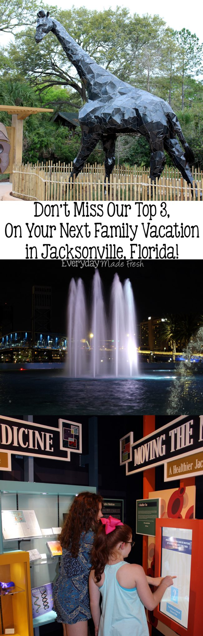 We recently spent several days in Jacksonville, and today we're sharing - Don't Miss Our Top 3, On Your Next Family Vacation in Jacksonville, Florida! | EverydayMadeFresh.com