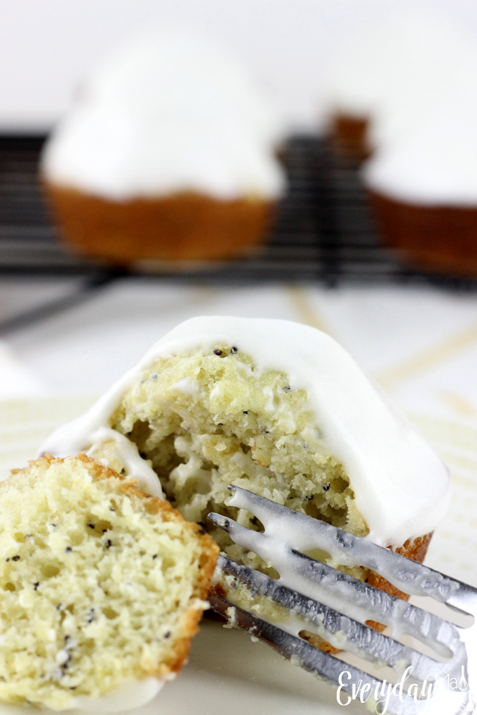 These insanely moist Iced Lemon Poppy Seed Muffins are bursting with lemon flavor! They are topped with a lemon cream cheese icing that will make mornings perfect. | EverydayMadeFresh.com