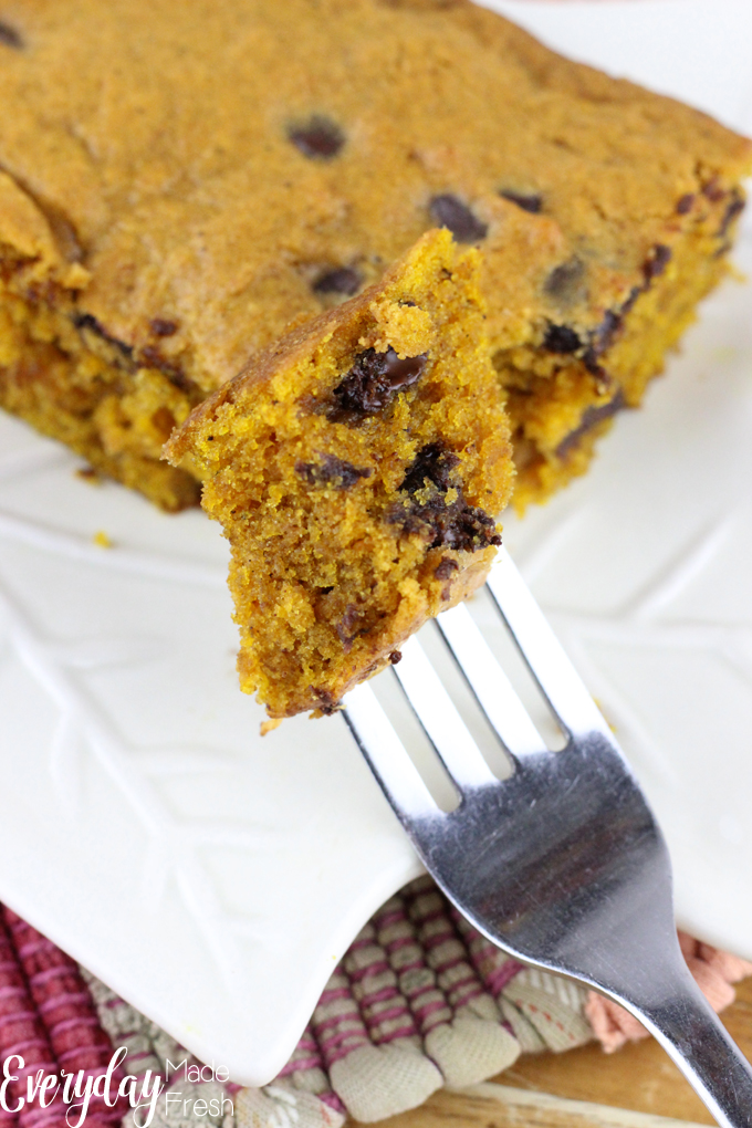 The perfect bar when you're craving pumpkin! These Chocolate Chip Pumpkin Bars are for those of us that can't get enough pumpkin! | EverydayMadeFresh.com