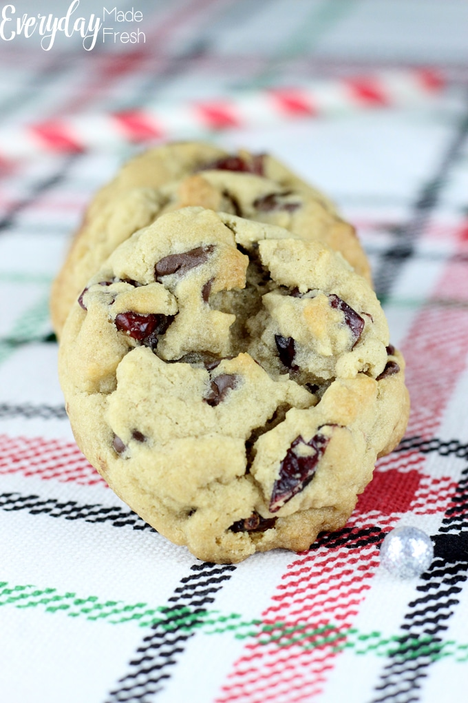 close up of cranberry chocolate chip cookie, the top of the cookie is facing you